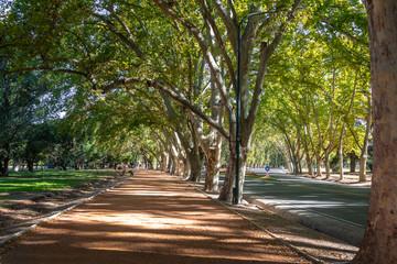 General San Martin Park - Mendoza, Argentina