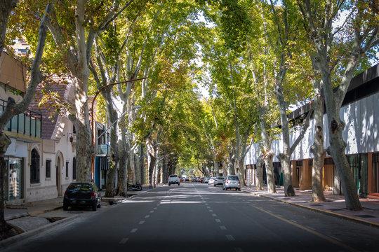 Street in downtown Mendoza - Mendoza, Argentina