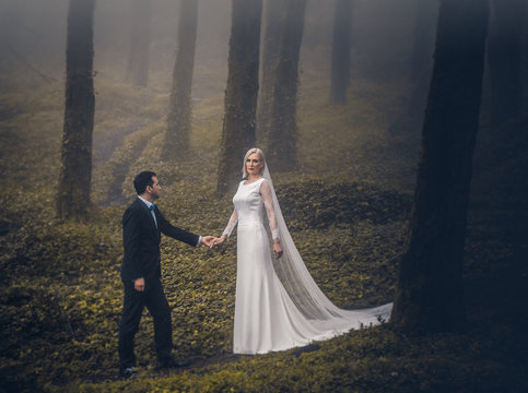 Lovely couple of newlyweds - bride and groom at beautiful mystery forest with amazing autumn fog.