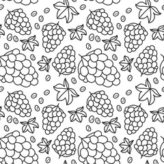 Grapes seamless pattern. Hand drawn fresh berry. Vector sketch background. Doodle wallpaper. Black and white print