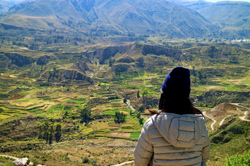 One Female Tourist Looking at Agricultural Terraces in Colca Canyon, Arequipa Region, Peru