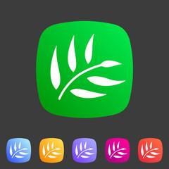 eucalyptus beauty osmetics oil icon flat web sign symbol logo label