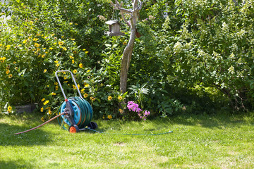 hosepipe reel in the beautiful, green garden bathed in sunlight