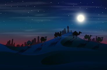 Camel in desert at night