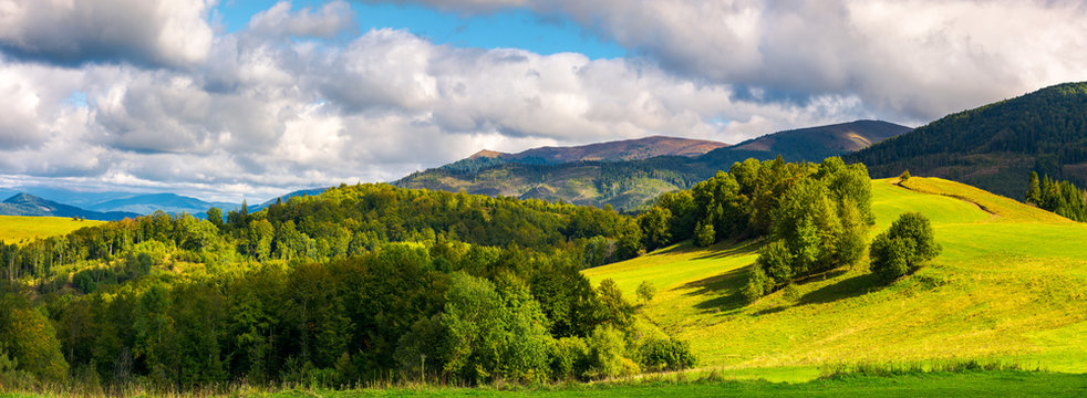 gorgeous panorama of mountainous landscape. woods and grassy alpine meadow in evening light. distant ridge benath a heavy cloud on a blue sky