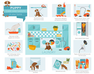 Puppy care and safety in your home. Laundry. Pet dog training infographic design