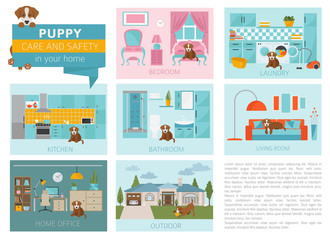 Puppy care and safety in your home. Pet dog training infographic design