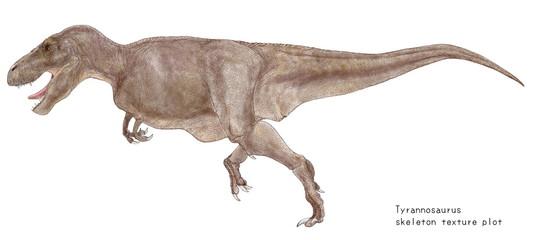 ティラノサウルス骨格図の肉付けイラスト画像。体色は大型の肉食恐竜であることから目立たない体色に抑えている。