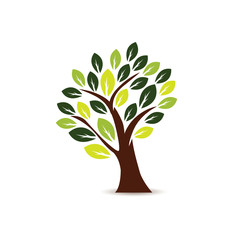 Tree Icon in white background