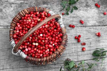 Cowberry berries in basket. Concept of health, longevity, natural medicine.