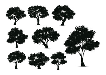 Silhouette tree illustration on a white background