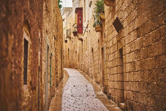 Narrow stone street in old Mdina city, Malta
