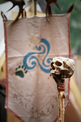 celtic skull and ensign