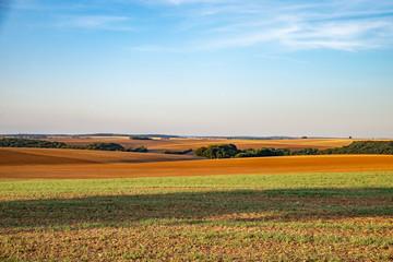 Paysage de campagne avec des champs à perte de vue en fin de journée en été