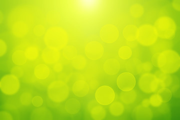 Green bokeh abstract light background blurly white bokeh on yellow and green background