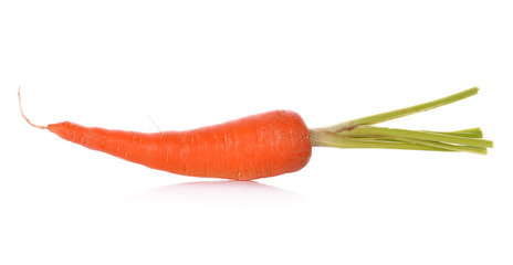 Carrot isolated on a white background.