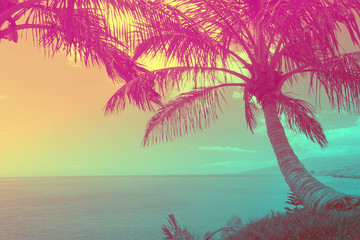 Beautiful tropical ocean with palm trees at sunset. Travel background with retro vintage duo-tone 90's style.