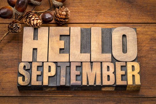 Hello September  word abstract in wood type