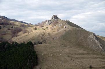 Shepherd's Valley