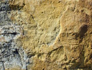 Texture of yellow, ferruginous sandstone with rare cracks.