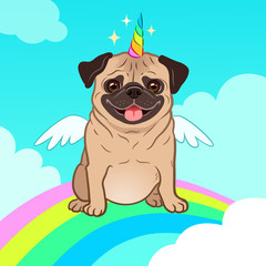 Unicorn pug dog with horn and wings vector cartoon illustration. Cute pug puppy in the sky with rainbow and clouds, smiling with tongue out. Humorous, magic, mythical creatures, believe in yourself.