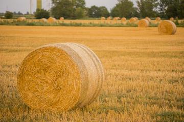 hay ball on field