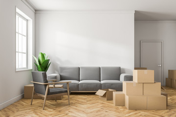 White living room with boxes