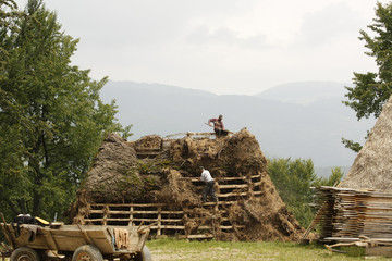 Two countrymen working on a wooden roof covering it with hay