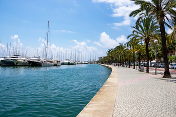 Maritime promenade, Paseo maritimo - Palma de Mallorca, Balearic Islands, Spain Wall mural