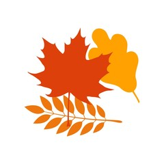 Vector autumn leaves icon