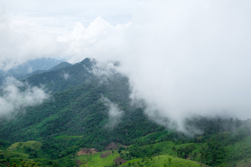 Landscape view of mountain covered in mist