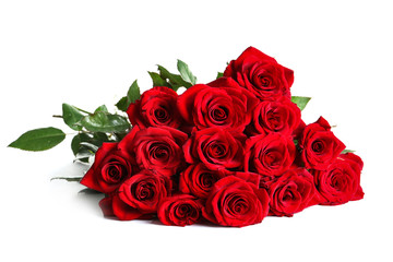Foto op Aluminium Roses Beautiful red rose flowers on white background
