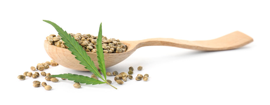 Spoon with hemp seeds and green leaf on white background