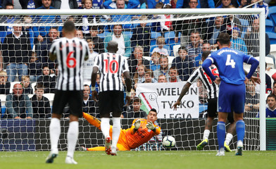 Premier League - Cardiff City v Newcastle United