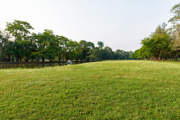 Beautiful landscape in park with green grass field at morning.