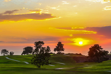 Canvas Prints Honey sunset over golf course