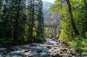 Pole Bridge at the Eagle Cap Wilderness of Wallowa-Whitman National Forest