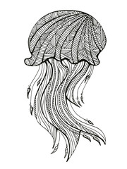 Hand drawn jellyfish for adult Coloring Page in zentangle style. Uncolored stylized jellyfish illustration with high details isolated on white background vector
