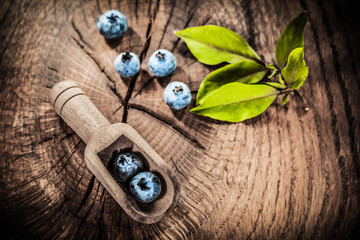 Sweet bilberries in vintage spoon on grunge board