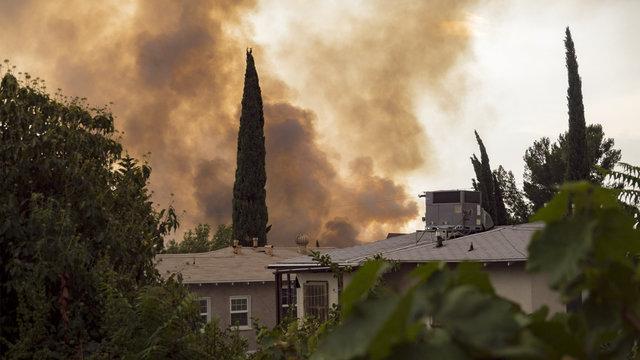 Wildfire Smoke in Neighborhood