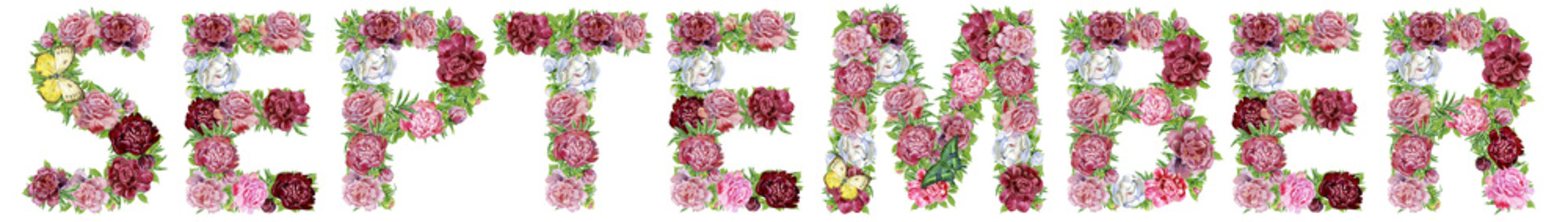 Word September of watercolor flowers