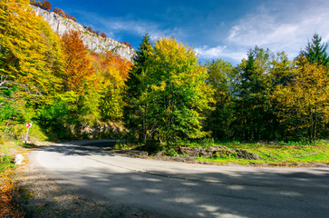 lovely autumn landscape in mountains. mixed forest with colorful foliage in bright light. travel by car concept