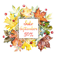 September sale -50% discount banner. Watercolor frame with bright autumn leaves and berries on a white background