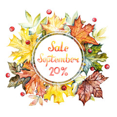 September sale -20% discount banner. Watercolor frame with bright autumn leaves and berries on a white background