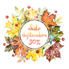 September sale -30% discount banner. Watercolor frame with bright autumn leaves and berries on a white background