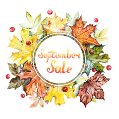 September sale discount banner. Watercolor frame with bright autumn leaves and berries on a white background