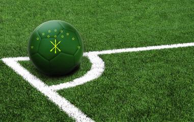 soccer ball on a green field