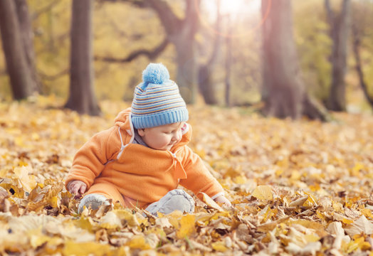 Happy toddler baby playing with leaves in autumn park.