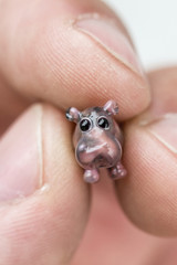 Small glass hippo in his fingers.