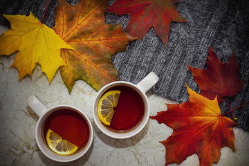 Two cups of black tea with lemon, bright maple leaves and gray knitted sweater on gray marble background. The concept of autumn.